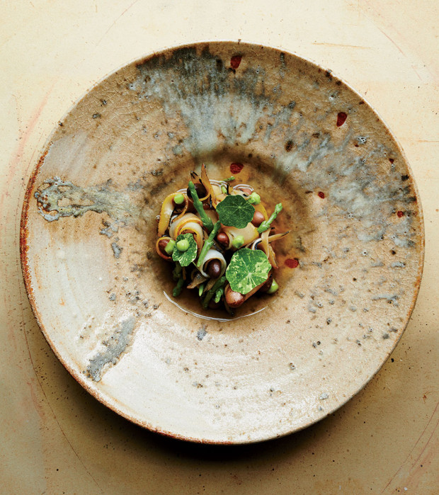 ceramics-christopher-kostow-bowl-620x699.jpg